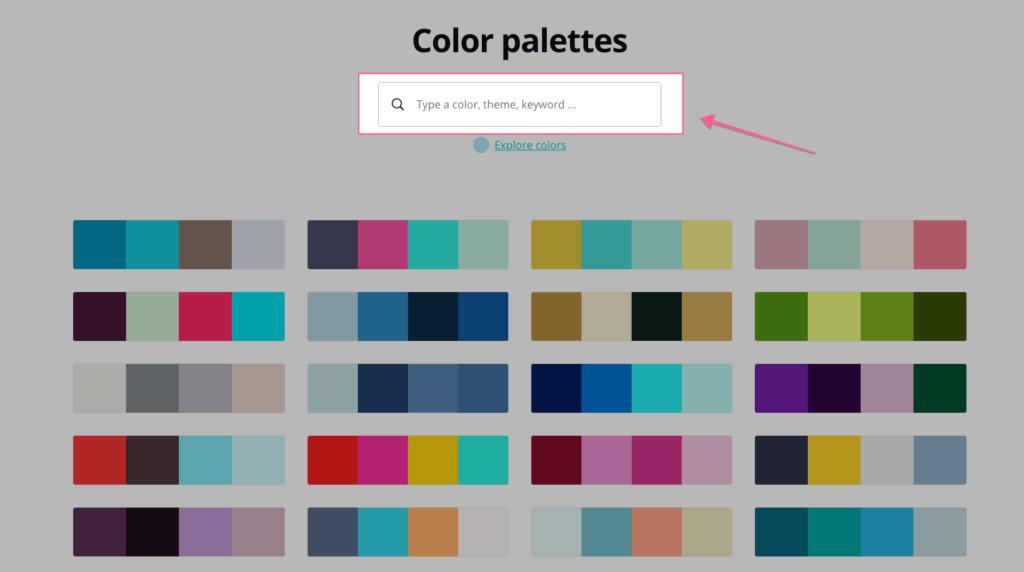 Color Pallet Cua Canva
